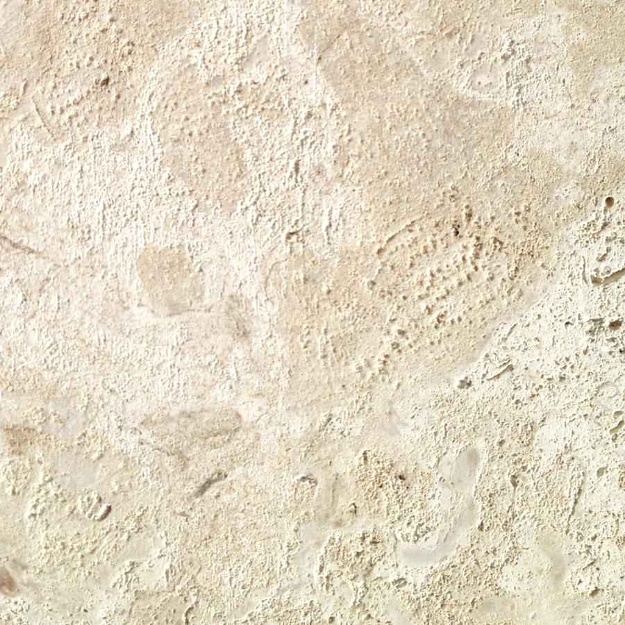 Coral Stone Tile Nalboor