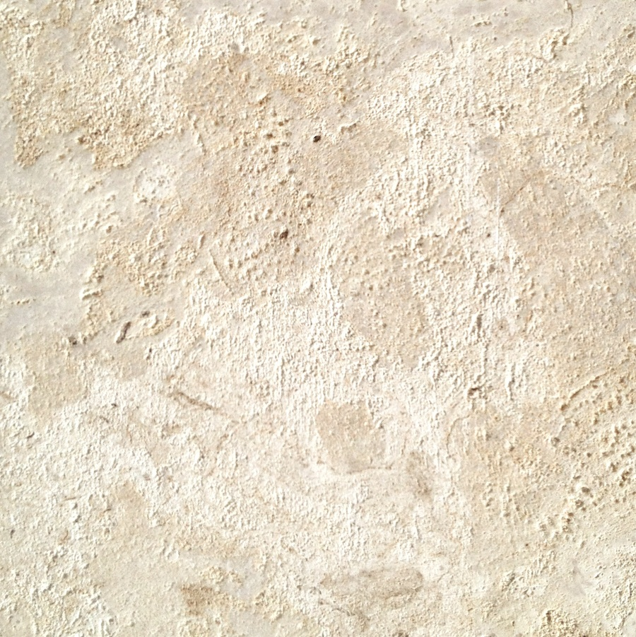 Coral Stone Wall Cladding : Coral stone tile